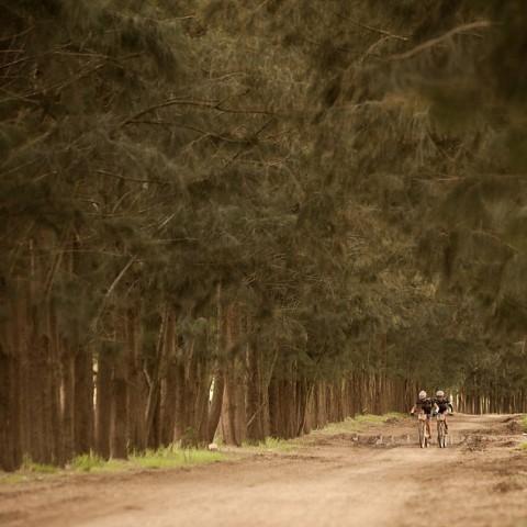 Cape Epic 2014 | Stage 3 (Foto von Sam Clark|SPORTZPICS)
